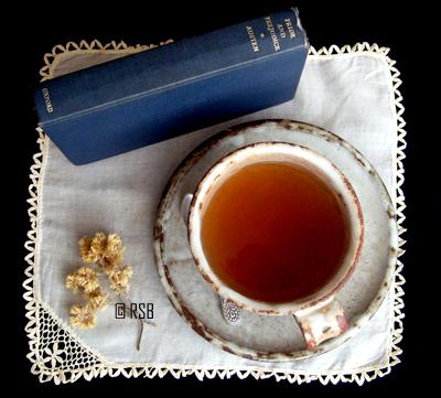 Convite para Chá com Jane Austen
