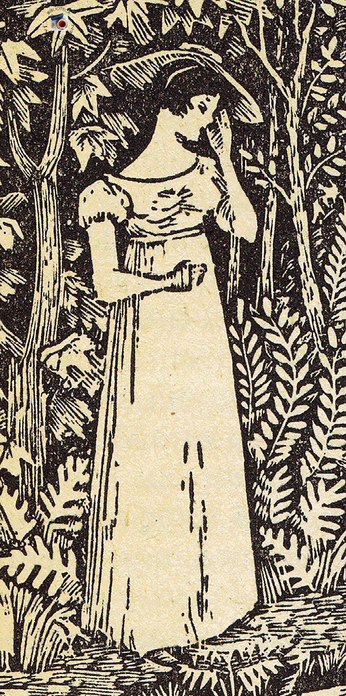 Elizabeth Bennet a mais amada heroína